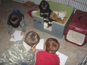 kids drawing nursing puppie