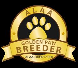 Gold Paw Breeder of Alpine Labradoodles